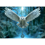 Educa Réveille ta magie