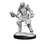 Wizkids Dragonborn Fighter Female