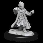 Wizkids Male Halfling Monk
