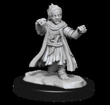 Male Halfling Monk