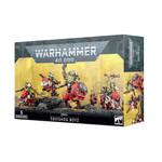 Warhammer 40K Orks Squighog Boyz