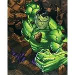 Diamond Dotz Hulk Smash