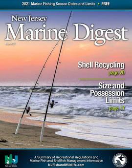 2021 NJ Marine Digest