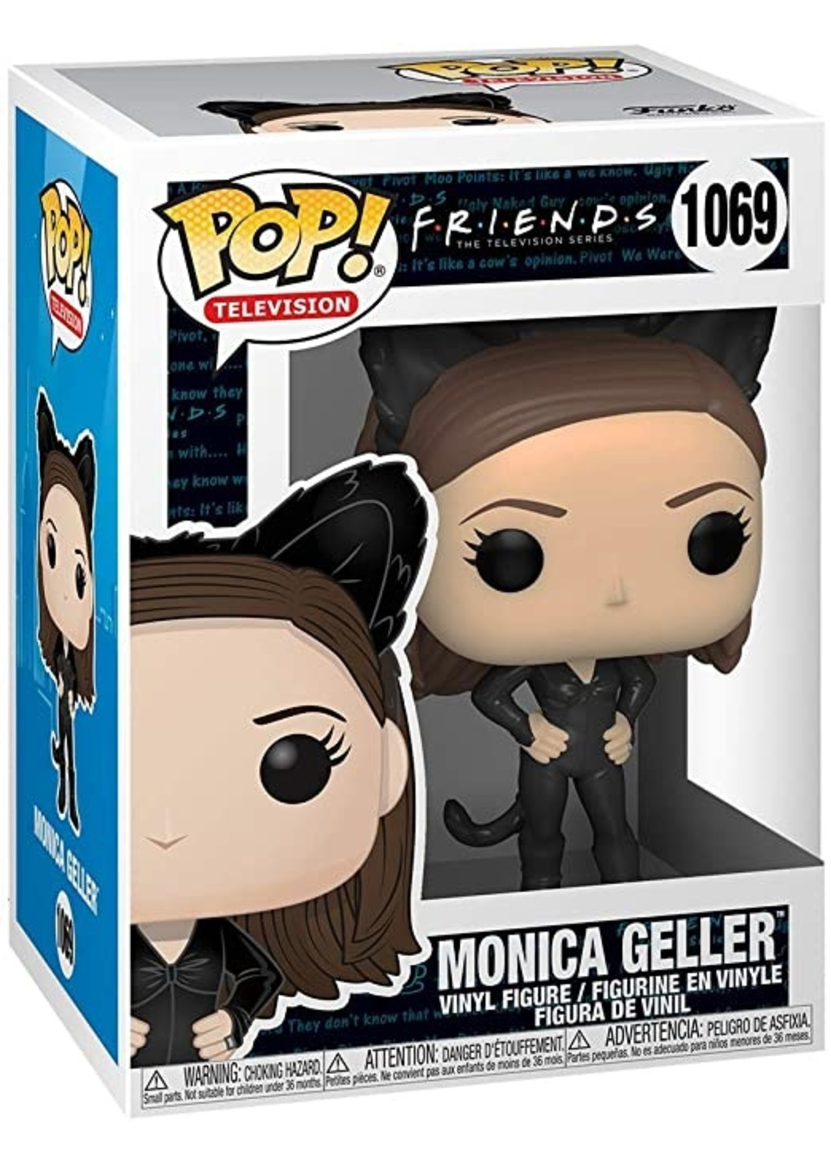 Friends - Monica As Catwoman
