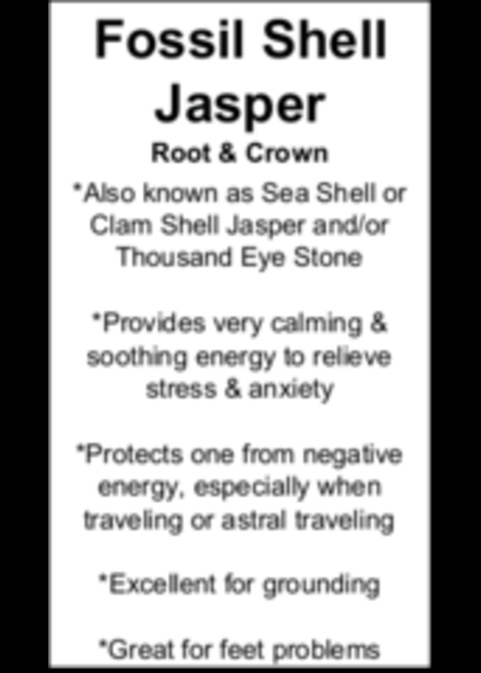 Fossil Shell Jasper Cards - Box of 250