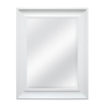 9165 Style Selections Beveled Wall Mirror