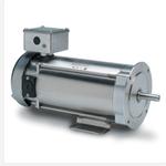 10518 Leeson 1/4 HP Motor