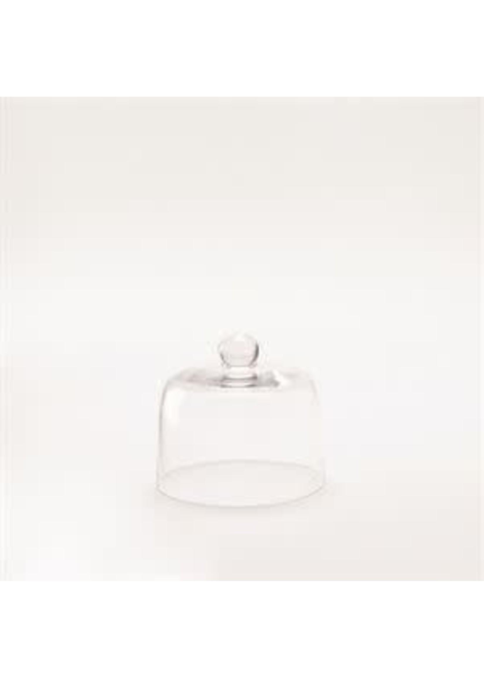 SMALL GLASS CLOCHE