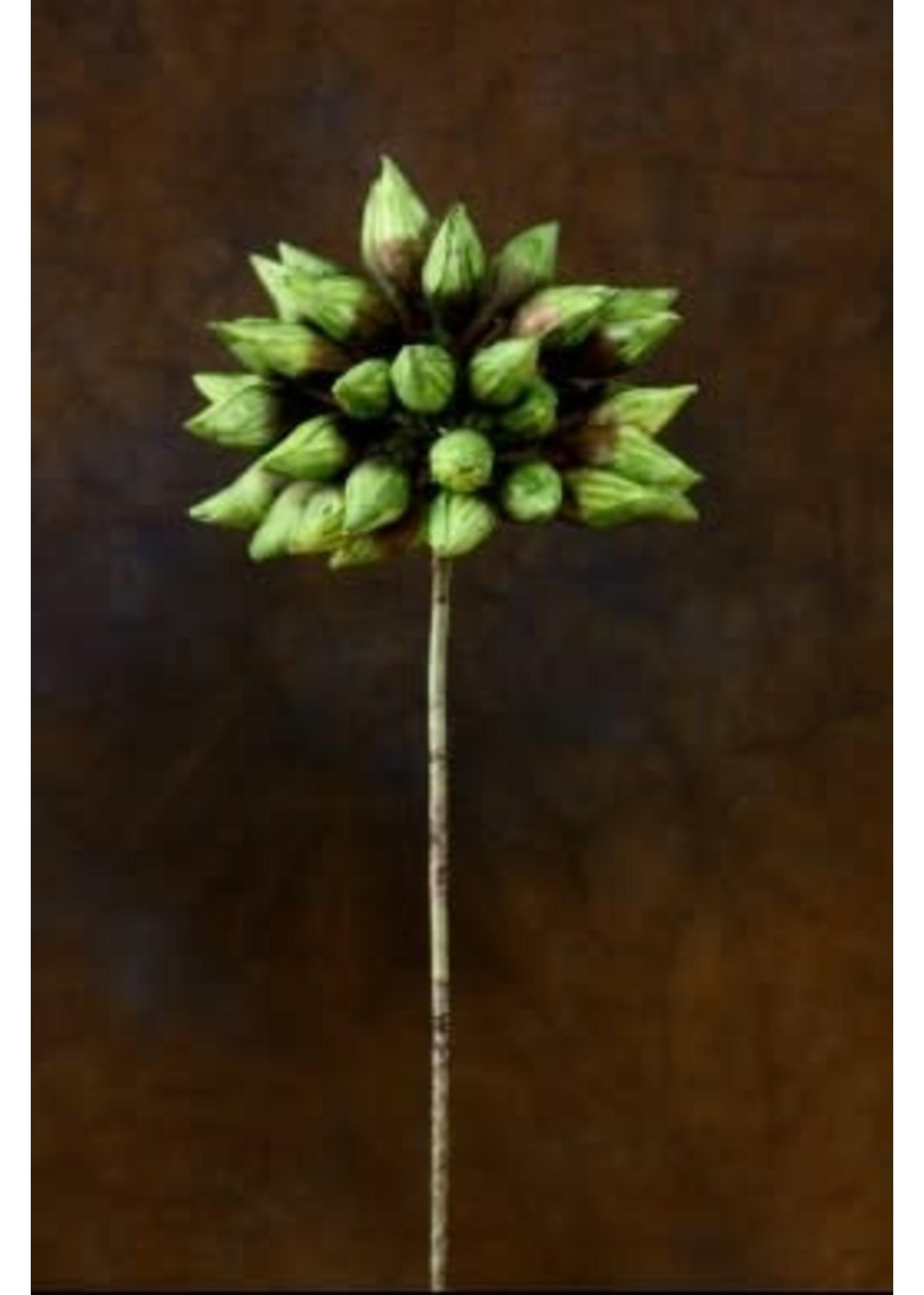 """BROWN & GREEN 18"""" FOAM FLOWER"""