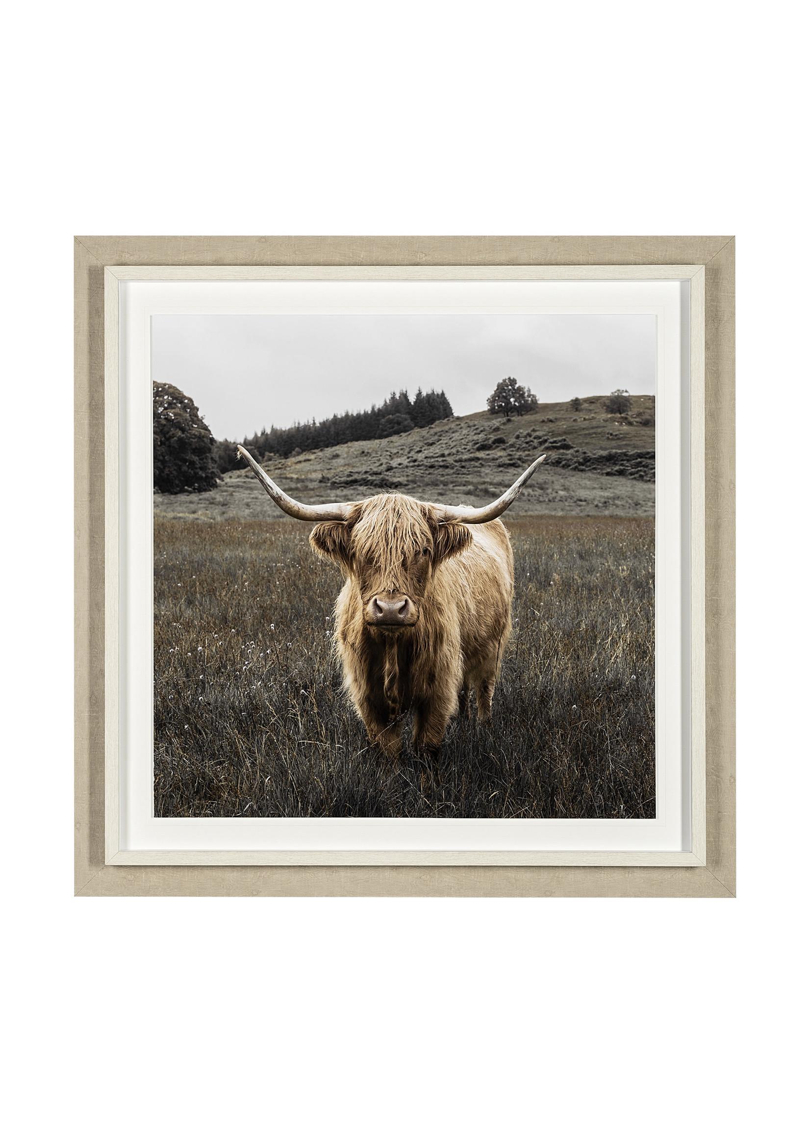 BERNIE ARTWORK 46x46