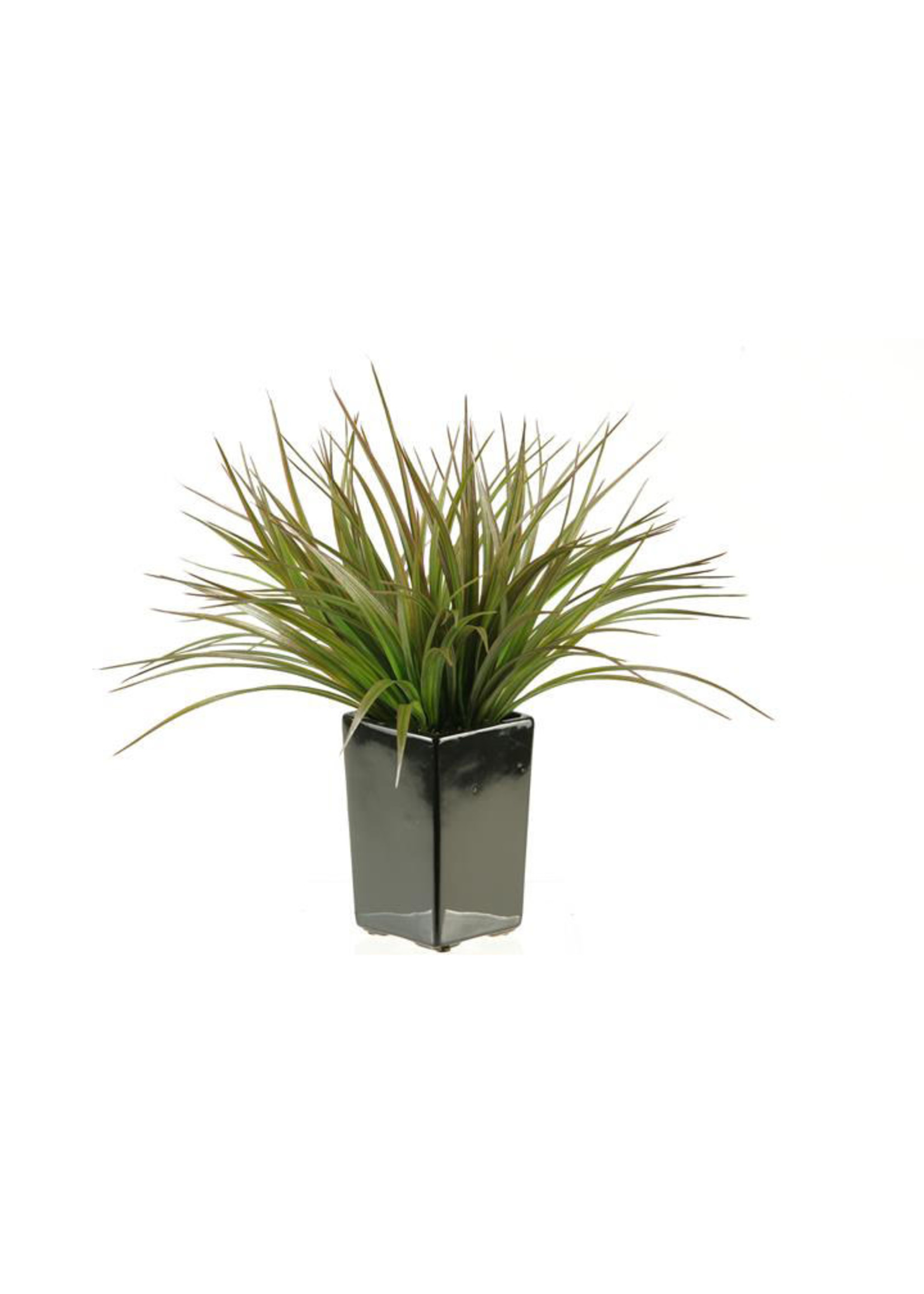 GREEN/BROWN GRASS IN SQUARE CONTAINER
