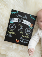 Love Designs Baby Monthly Sign   Woodlands