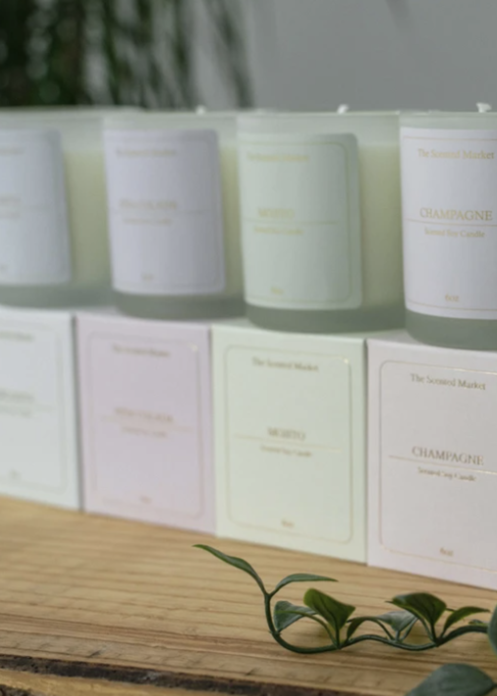 The Scented Market Cocktail Collection Candles   6oz