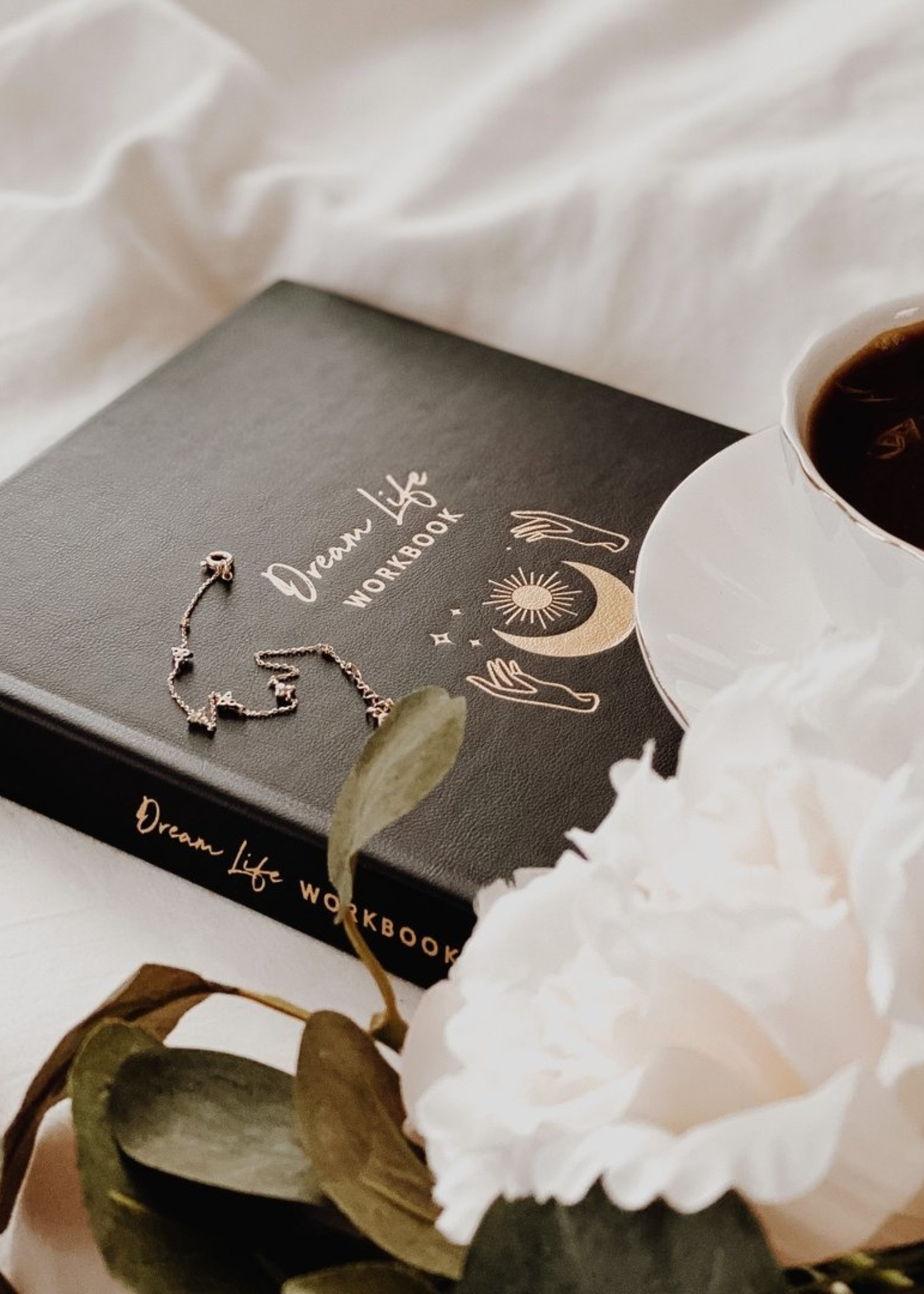 The Lamare Dream Life   Workbook