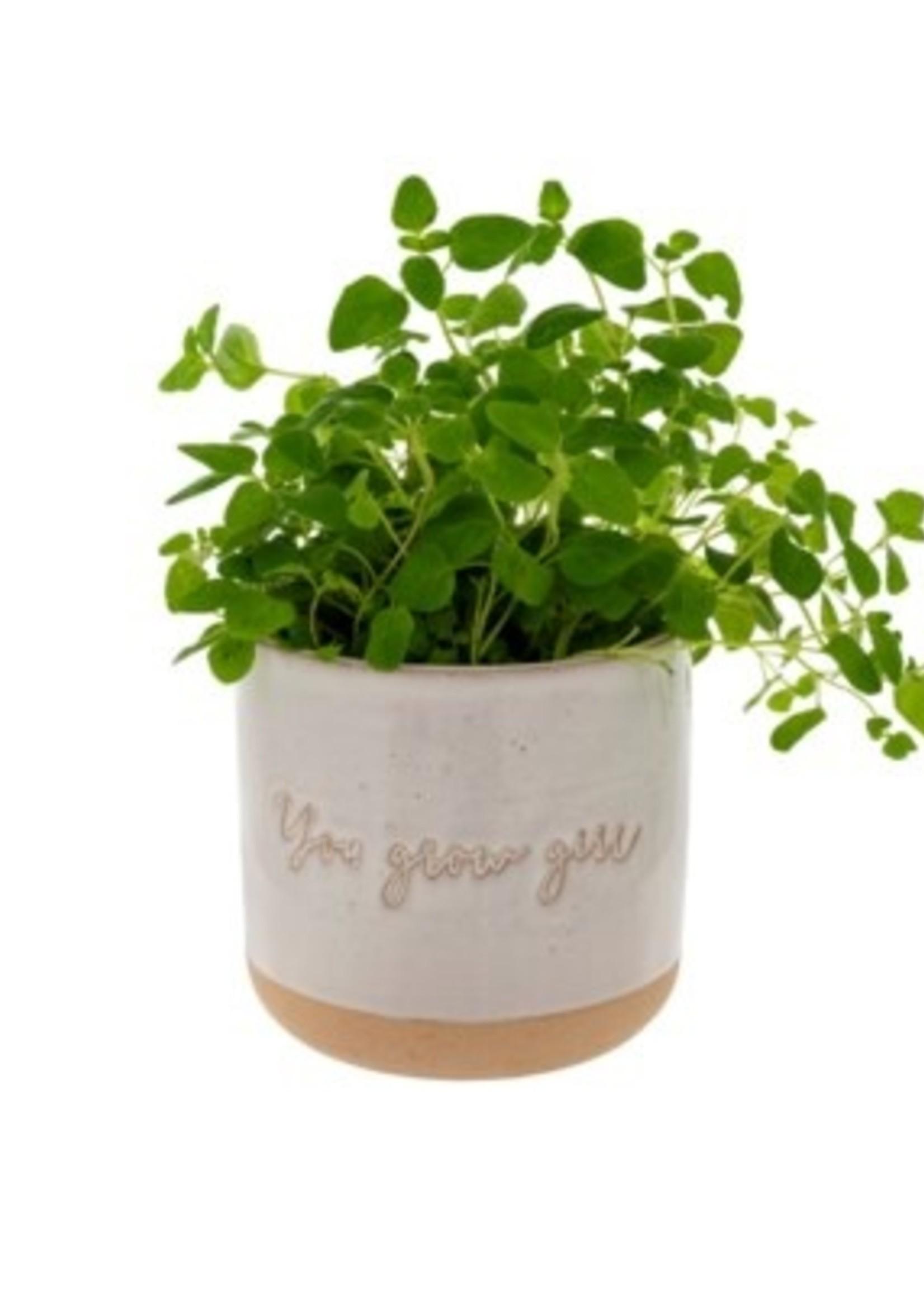 Indaba Trading Co You Grow Girl Pot