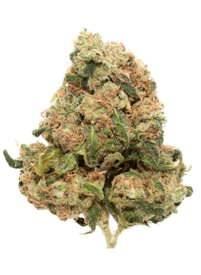Hippie Hemp - Delta 8 Flower | Sour Diesel
