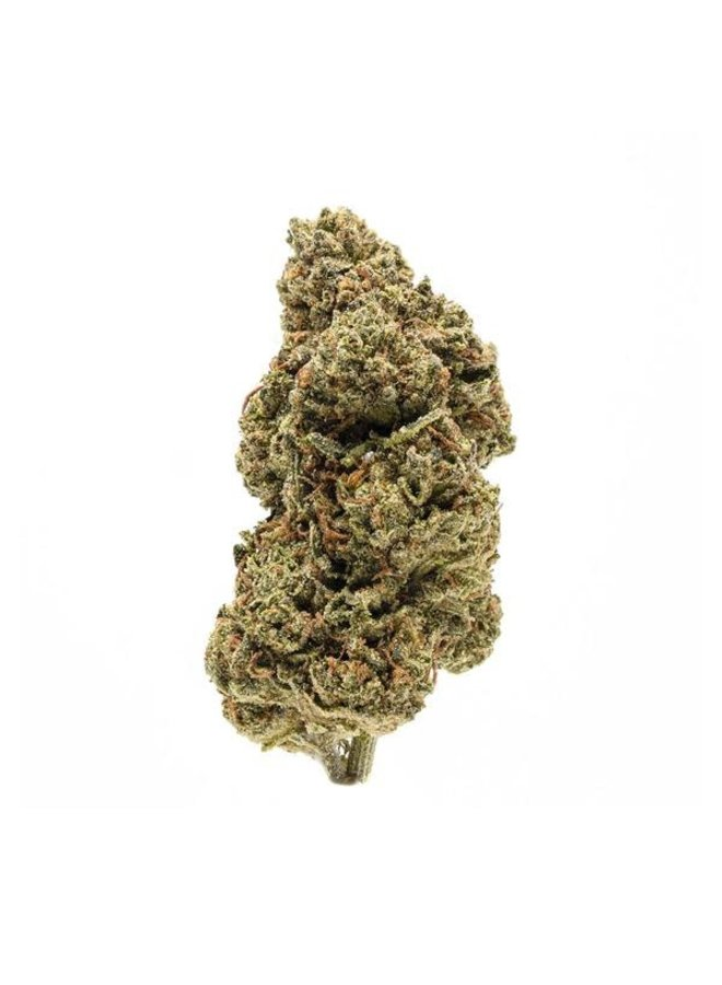 Hippie Hemp - Delta 8 Flower   Special Sauce