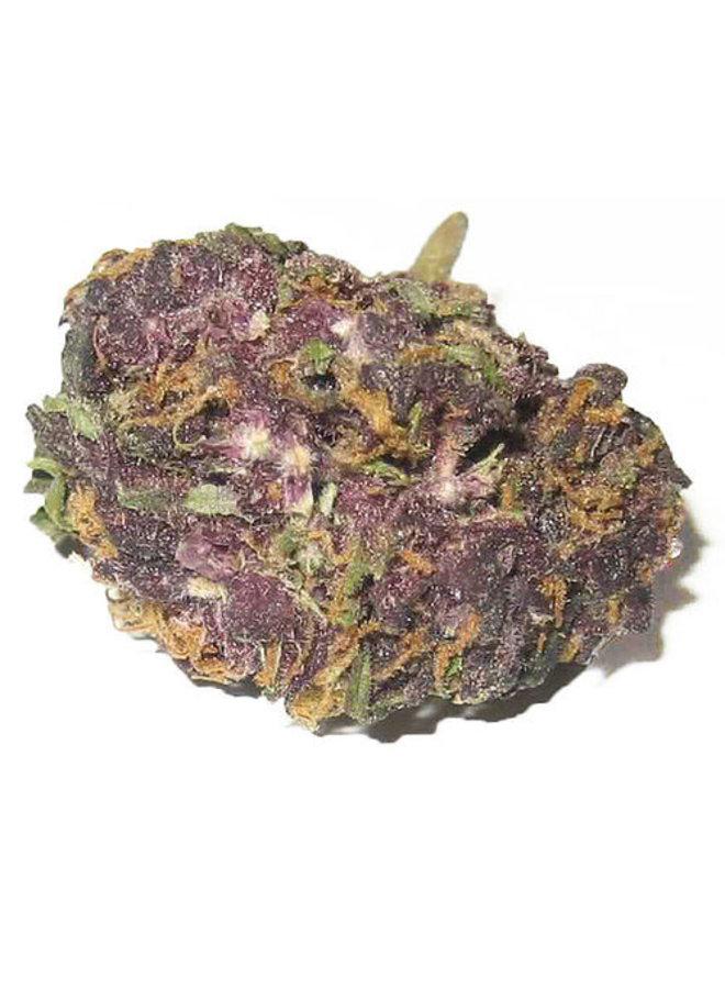 Hippie Hemp - Delta 8 Flower | Granddaddy Purple