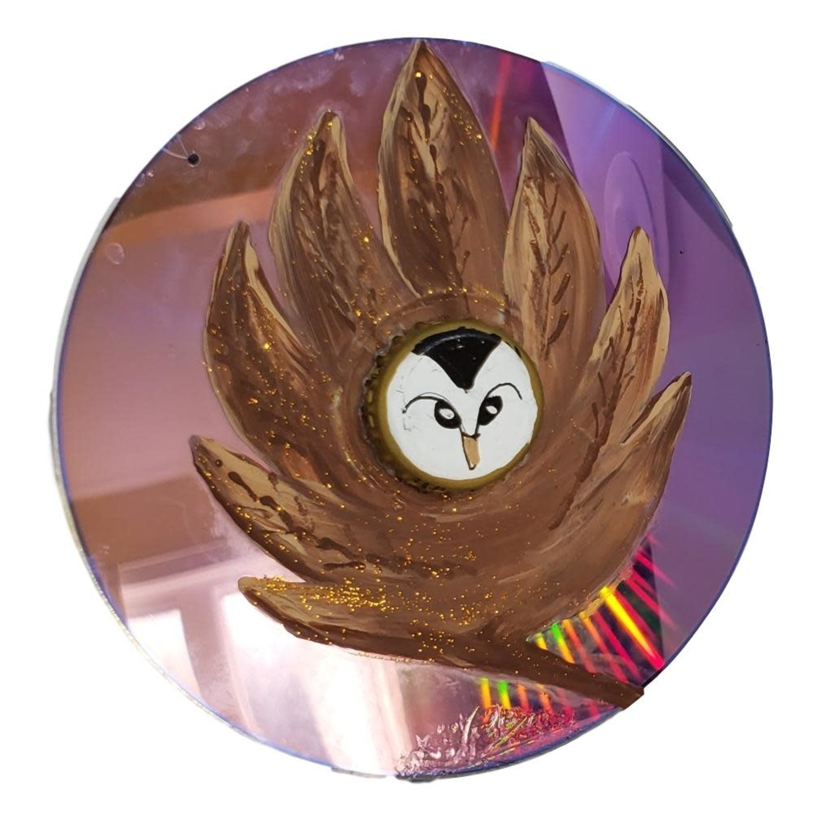 Off The Wall Gallery Hand-painted Owl CD Suncatcher