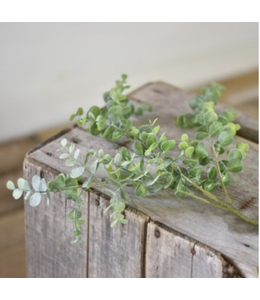 "PD HOME 25"" Eucalyptus Green Stem"