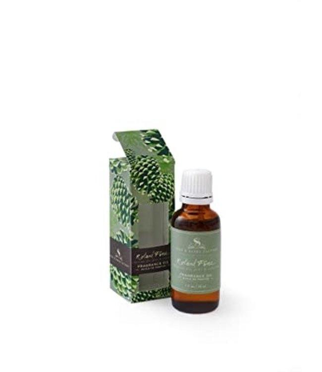 Soap & Paper Factory Roland Pine Fragrance Oil