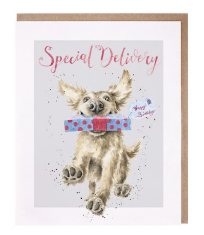 Wrendale Designs Special Delivery Birthday Card