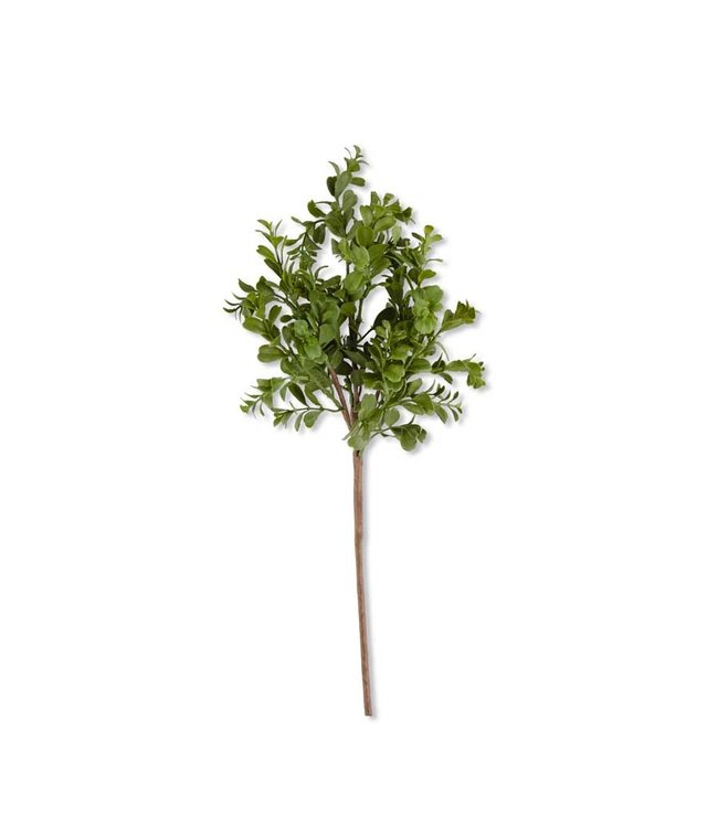 K&K Interiors 18 Inch Real Touch Boxwood Pick
