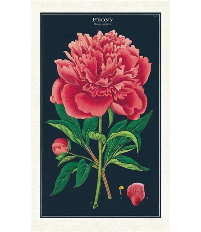 Cavallini & Co. Botanica - Peony Tea Towels