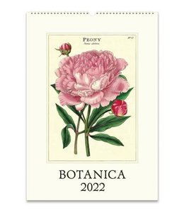 Cavallini & Co. Botanica Wall Calendar