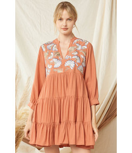 Entro Terra Cotta Emboidered Dress