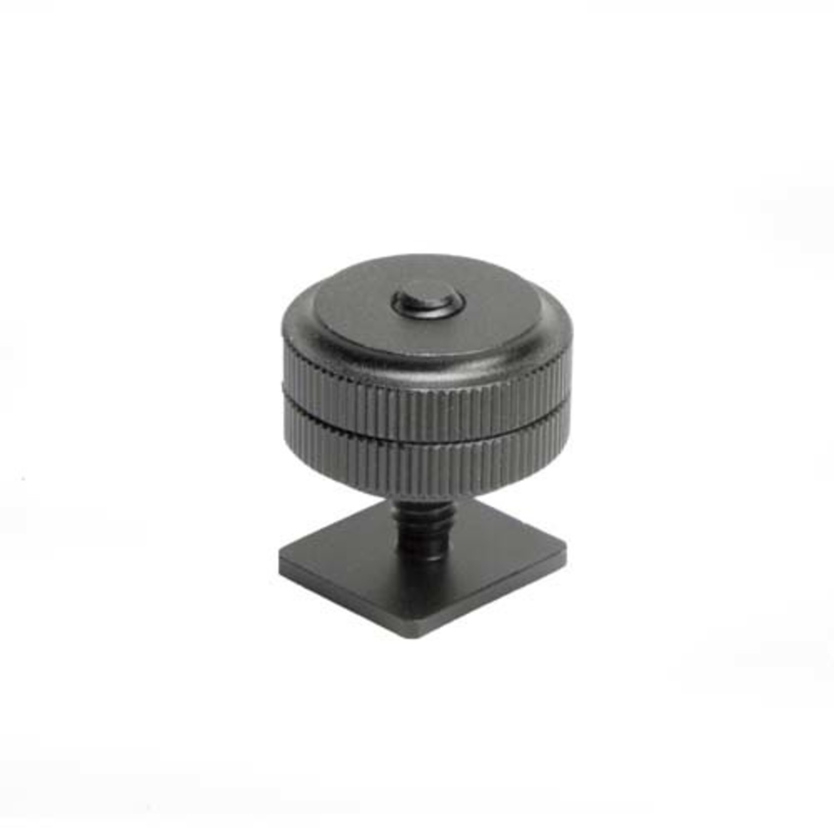 ProMaster Standard Shoe to 1/4-20 Thread Adapter