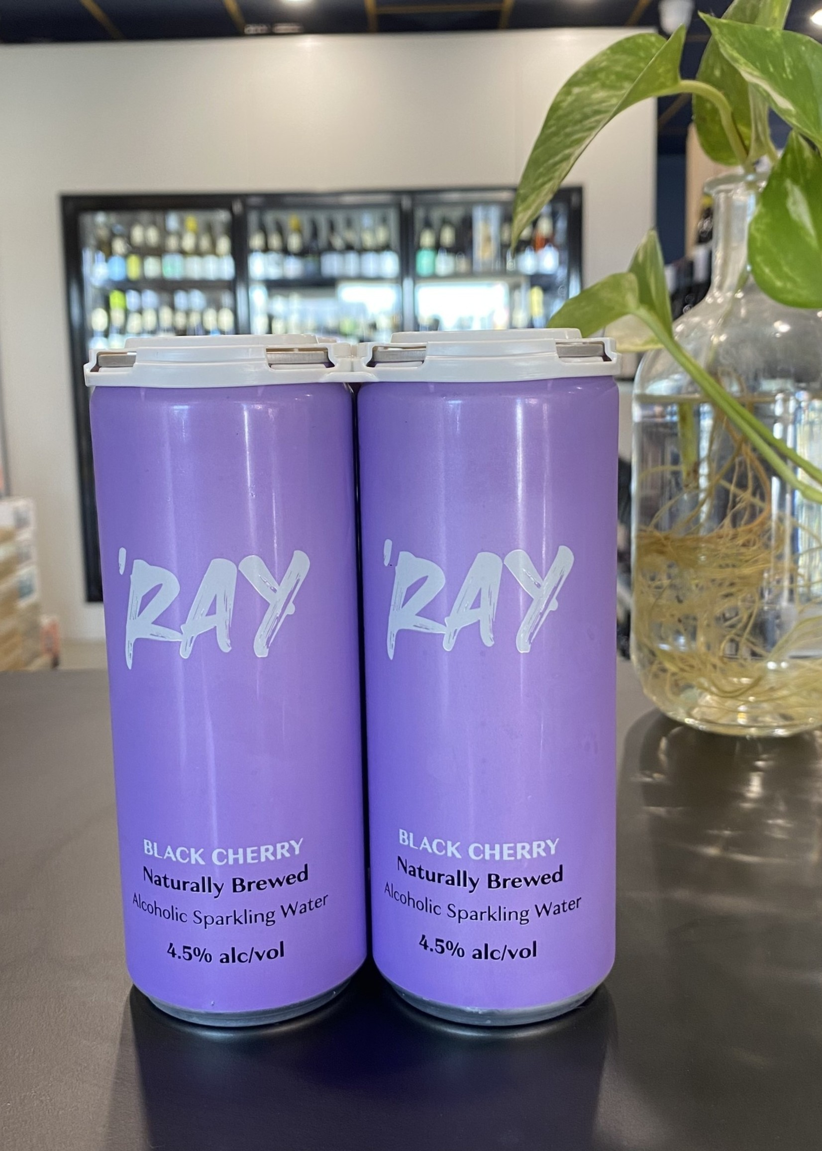 Hop Nation Brewing Co. Ray Black Cherry Seltzer