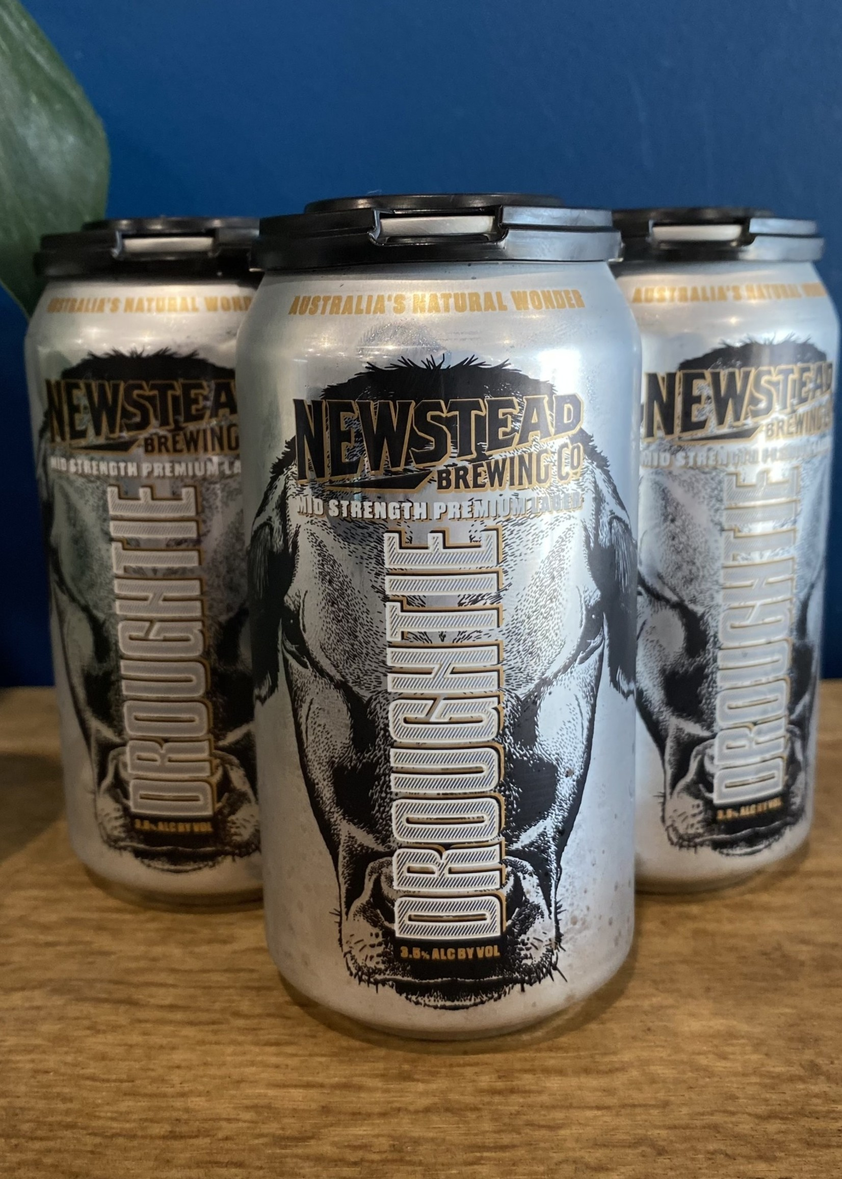 Newstead Brewing Co. 'Droughtie' Mid Strength Lager