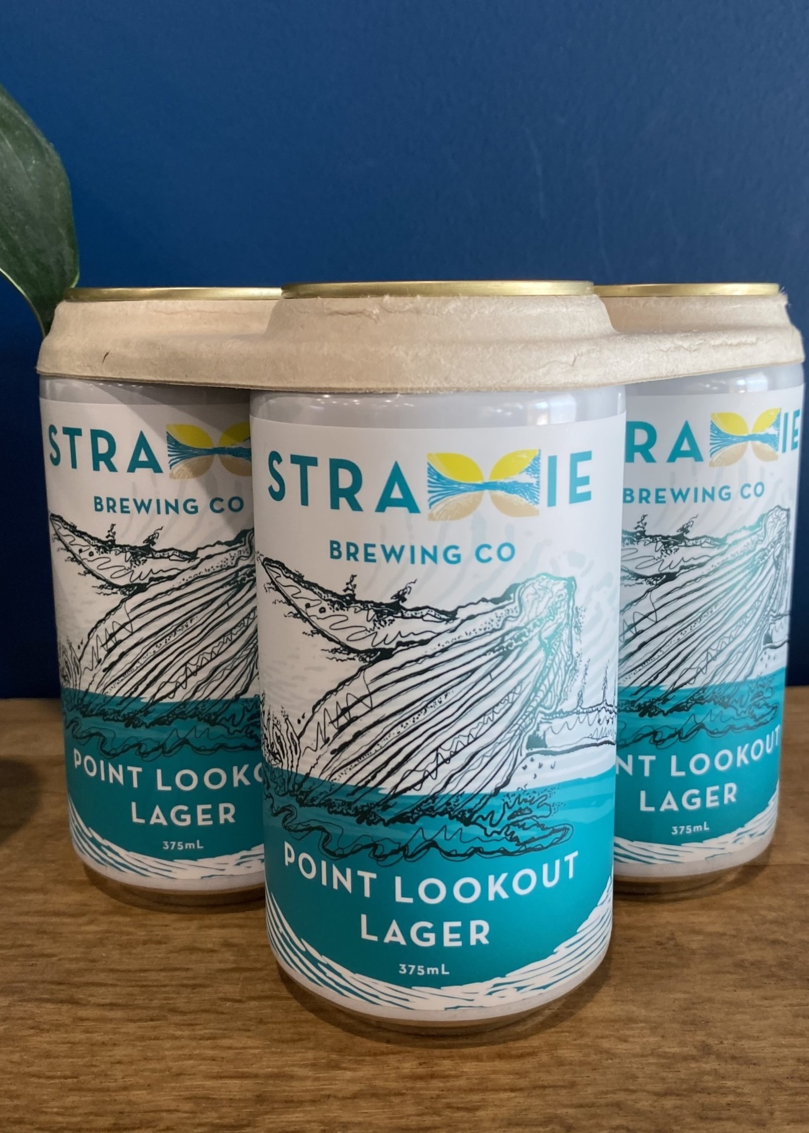 Stradbroke Brewing Co. Point Lookout Lager