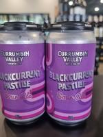 Currumbin Valley Currumbin Valley 'Blackcurrent Pastile' Sour Ale 4 Pack