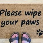 Wipe Your Paws Please Doormat