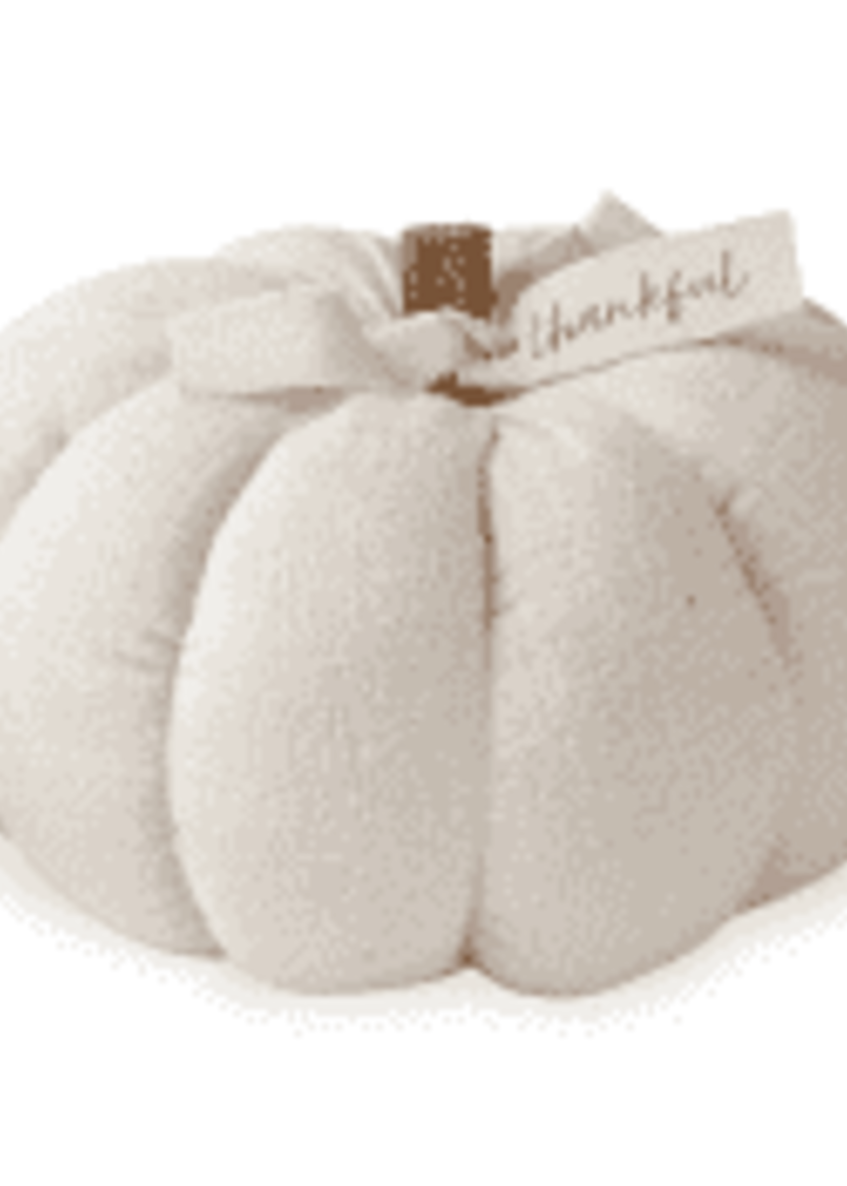 Mudpie Medium Cream Cotton Pumpkin