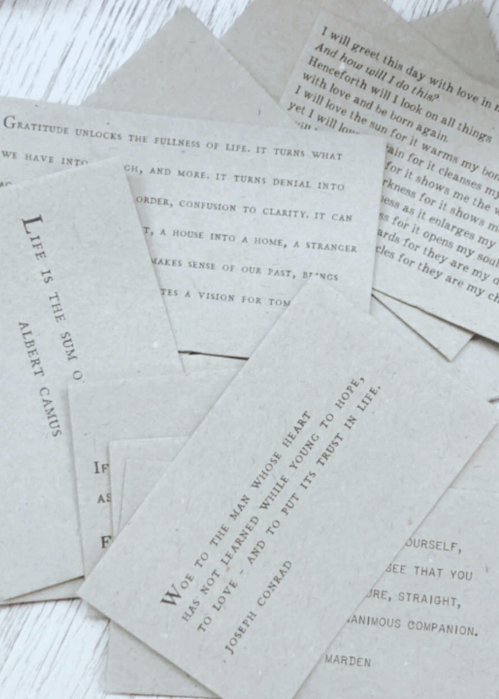 Sugarboo & Co. Paper Quotes