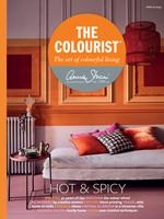 Annie Sloan US Inc Annie Sloan Book The Colourist: Hot & Spicy