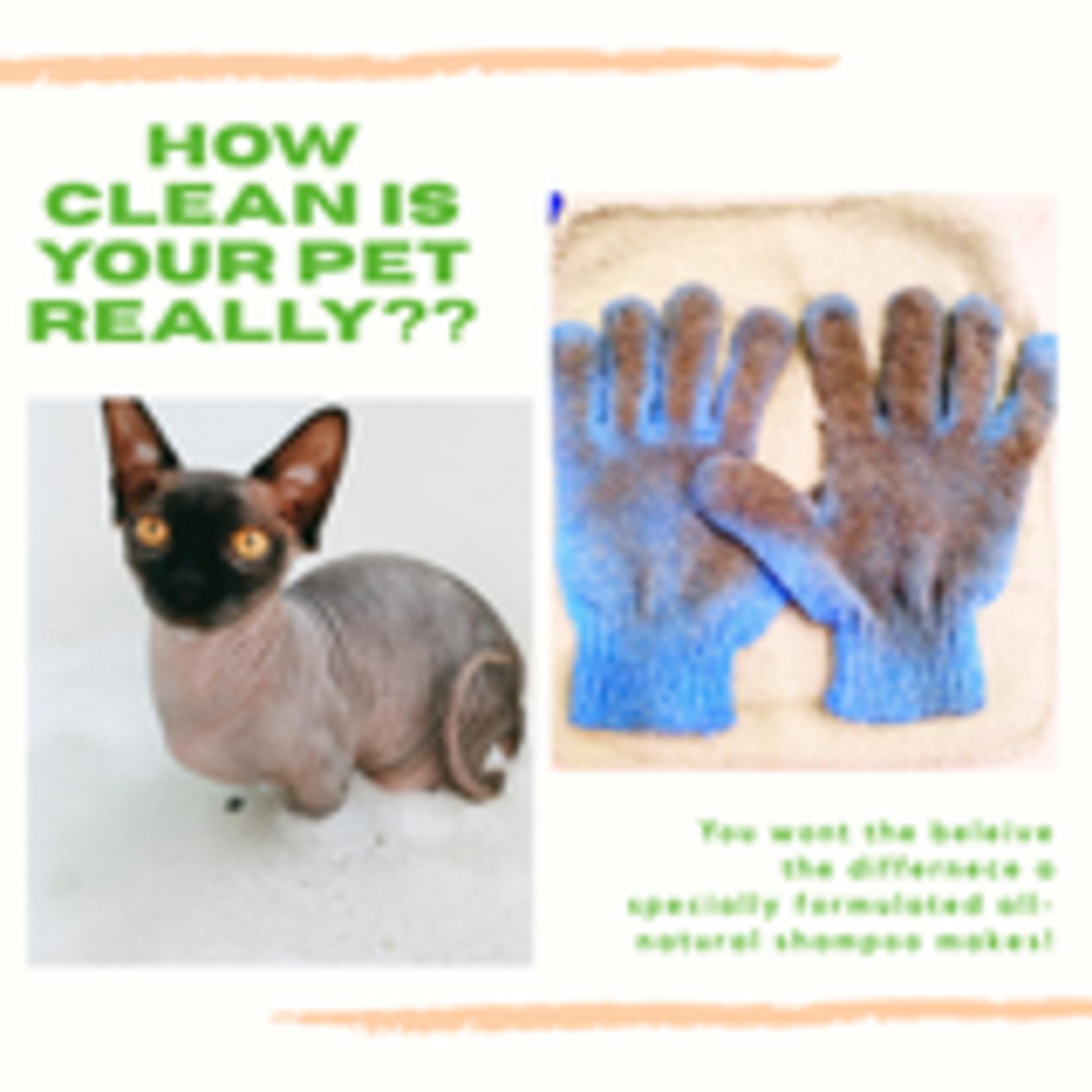 EcoTools® Bath & Shower Gloves
