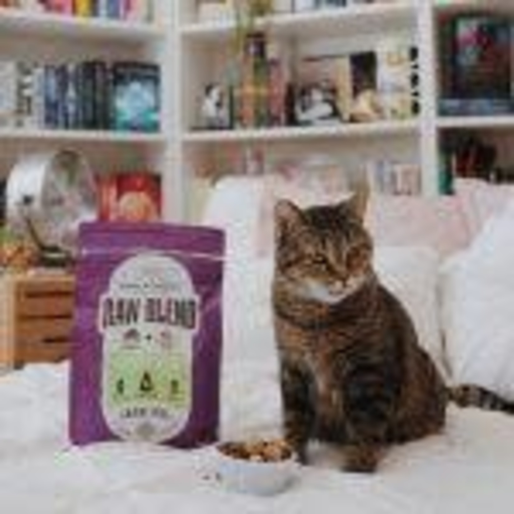 Stella & Chewy s Raw Blend Cage Free