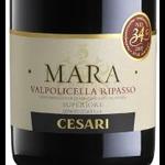 Cesari Cesari Mara Valpolicella Ripasso 2018  Veneto, Italy
