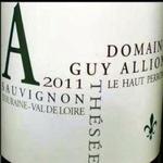 Domaine Guy Allion Domaine Guy Allion Sauvignon Blanc 2019  Loire, France