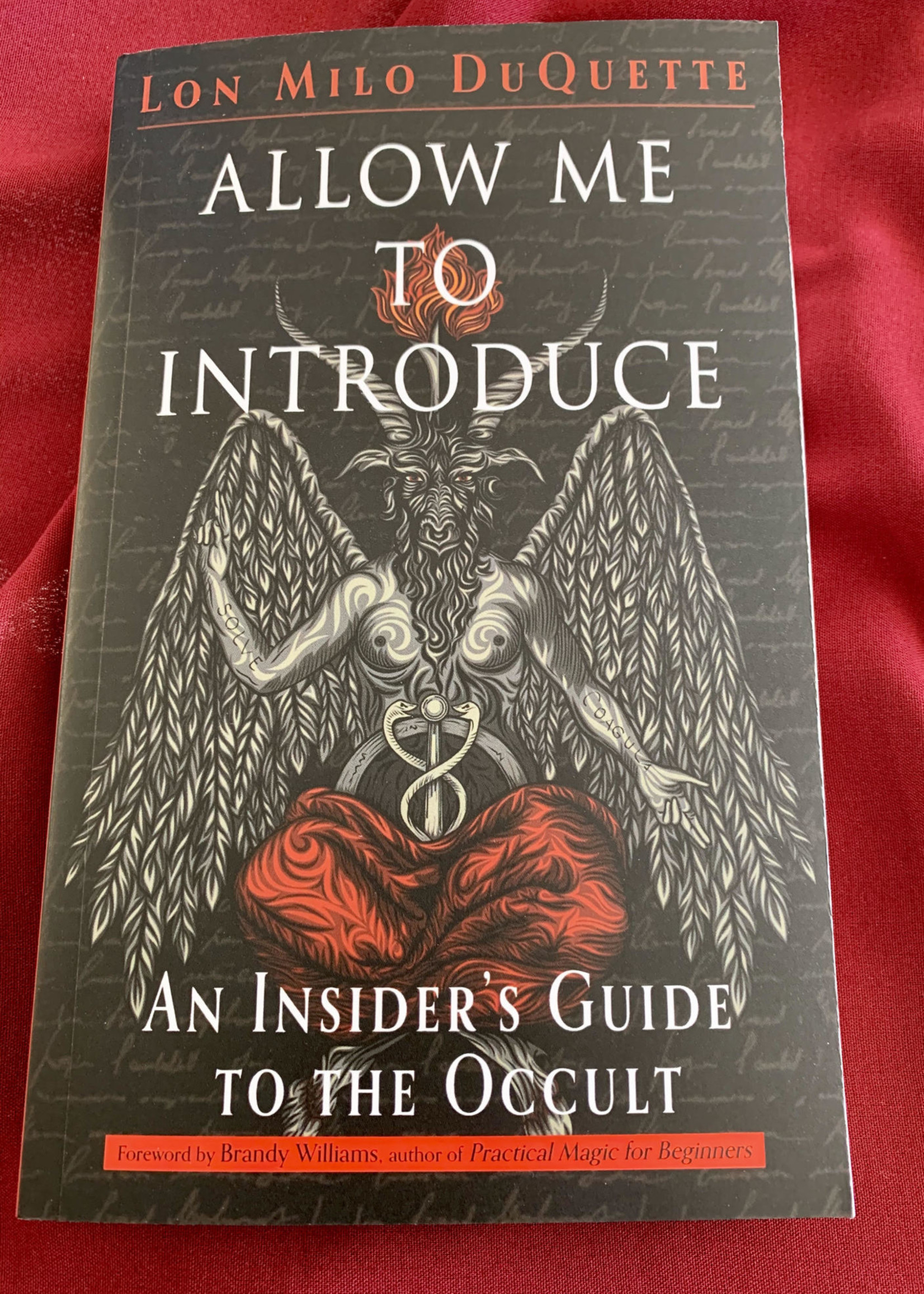 Allow Me to Introduce An Insider's Guide to the Occult