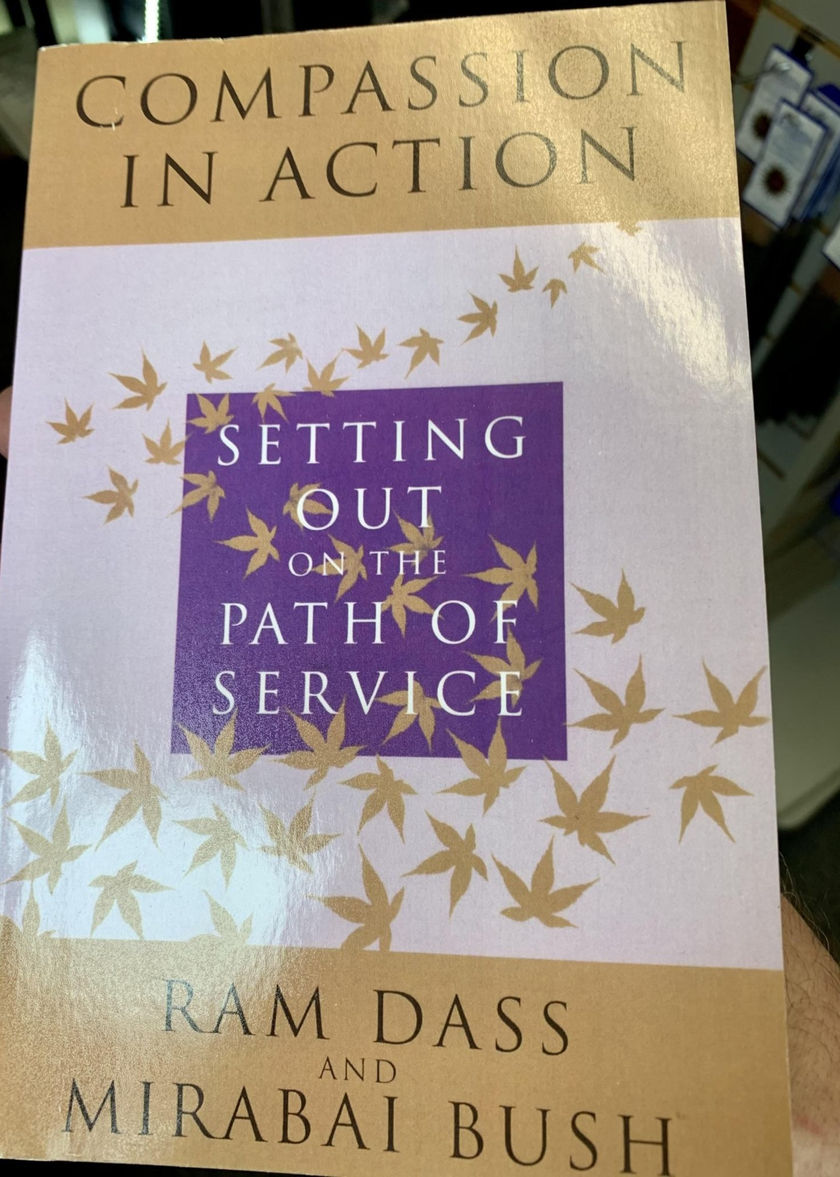 Compassion in Action - Setting Out on the Path of Service - Ram Dass & Mirabai Bush