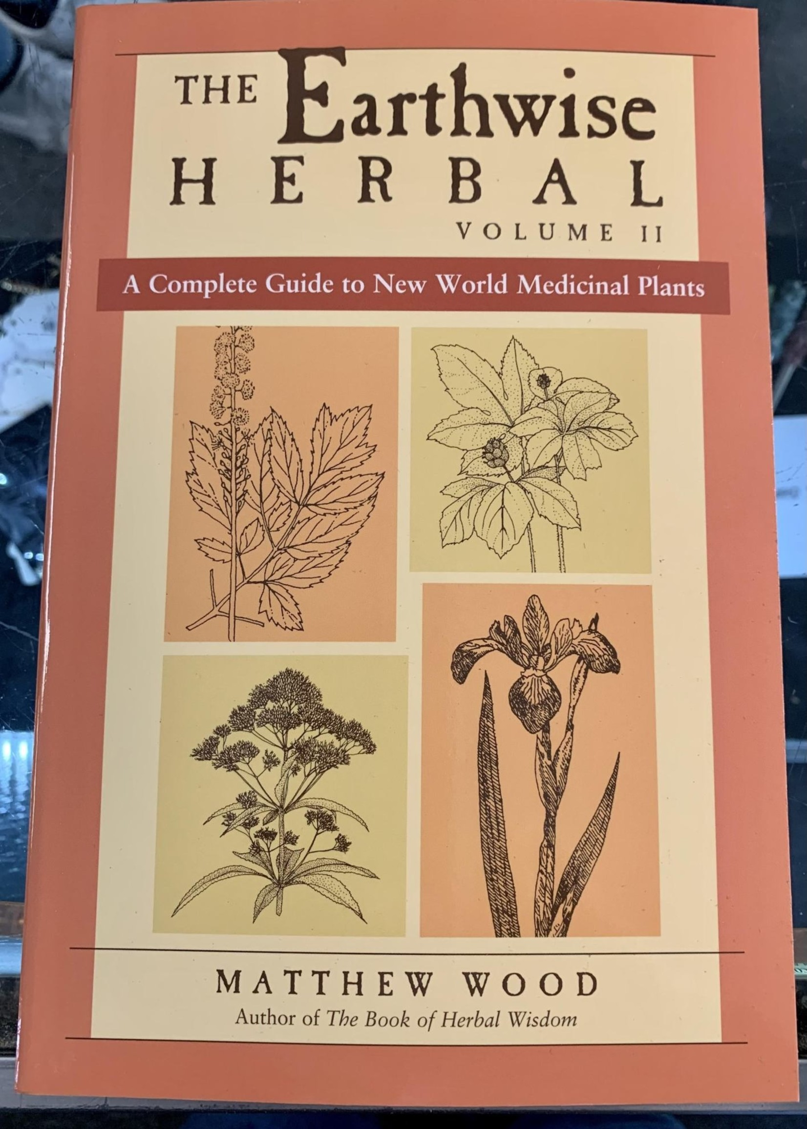 The Earthwise Herbal, Volume II A COMPLETE GUIDE TO NEW WORLD MEDICINAL PLANTS - By MATTHEW WOOD