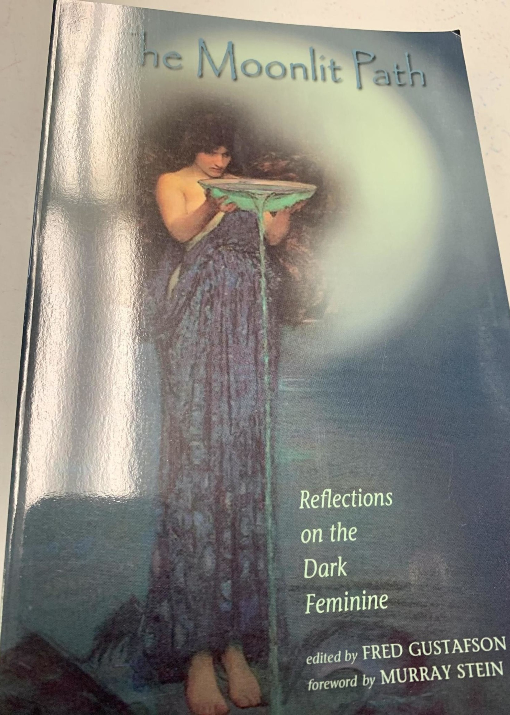 The Moonlit Path Reflections on the Dark Feminine - Fred Gustafson
