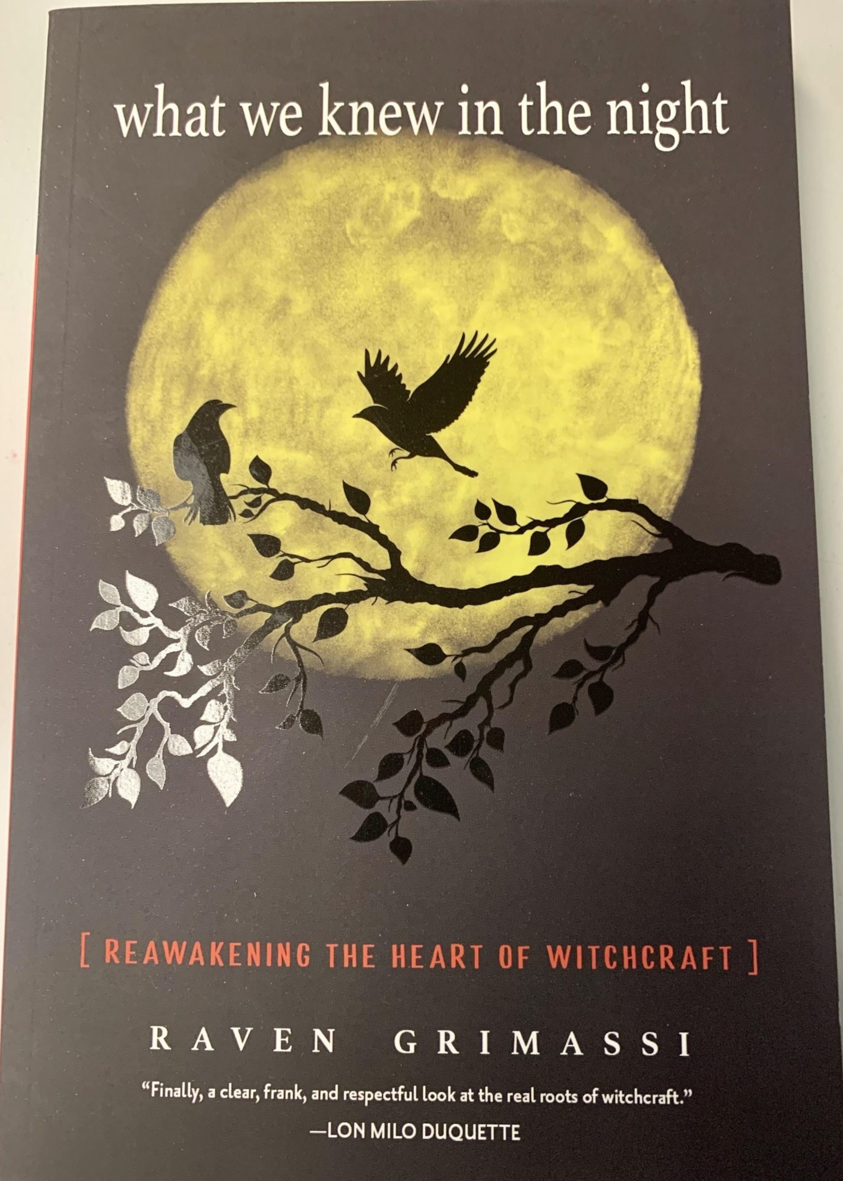 What We Knew in the Night - Raven Grimassi