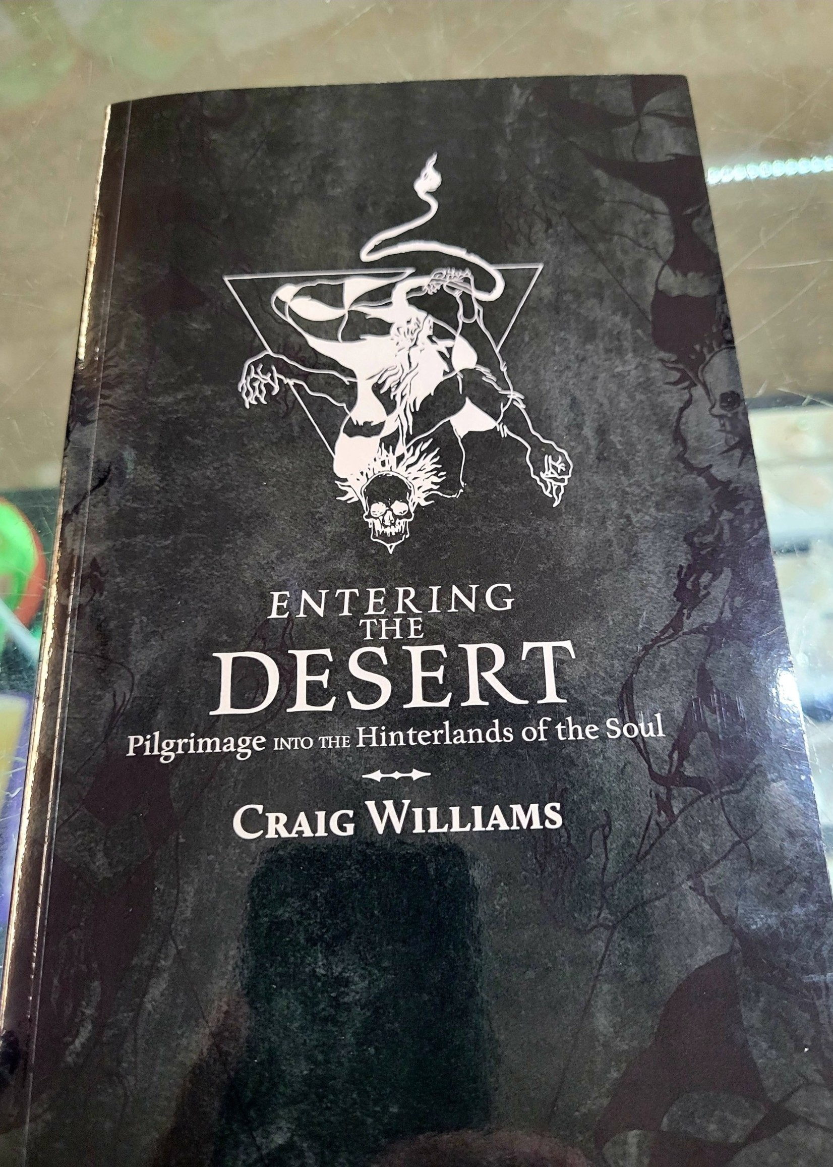 Entering the Desert Pilgrimage into the Hinterlands of the Soul   by Craig Williams