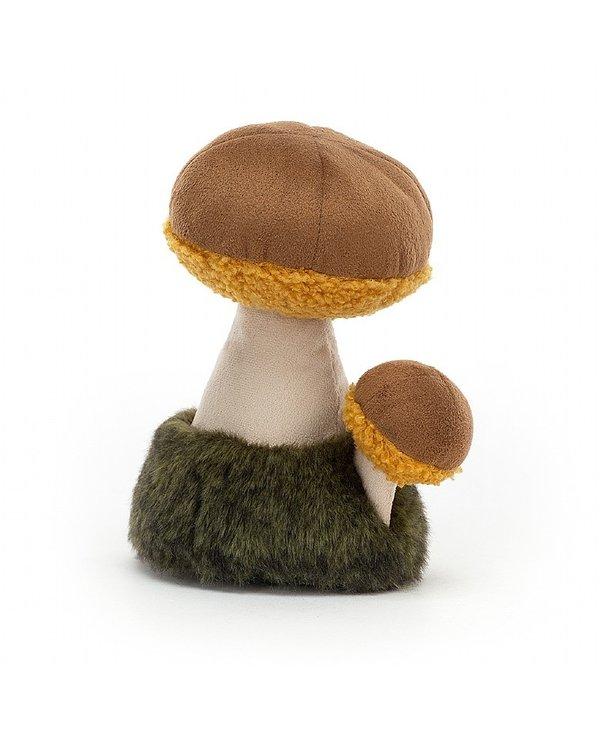 Wild Nature Boletus Mushroom